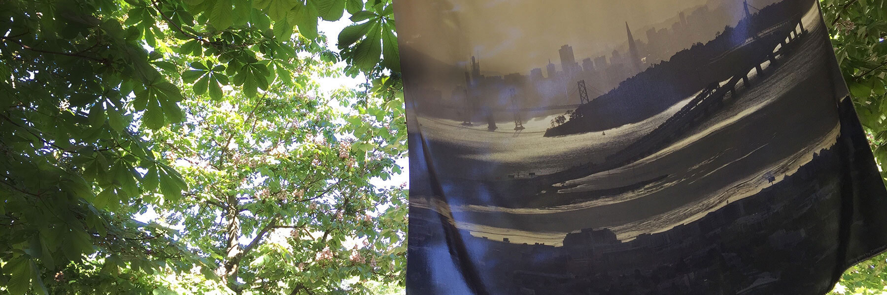 printed silk scarf of san francisco cityscape in park