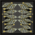 dark stripy kissing fish silk twill scarf design for mobile
