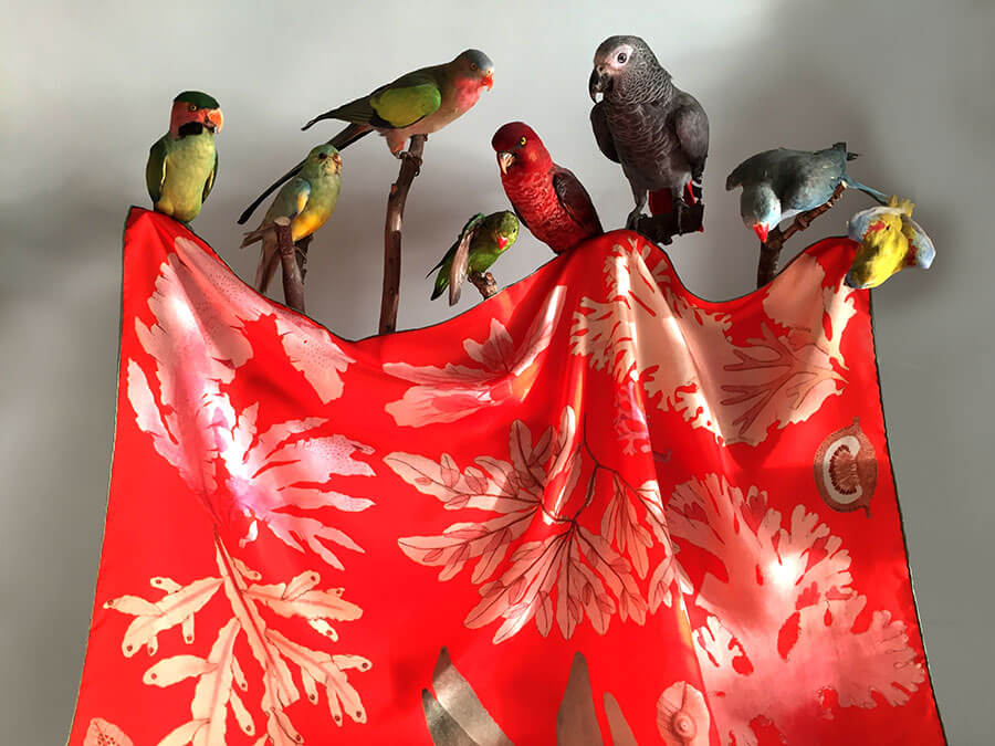 algae printed red silk scarf with birds