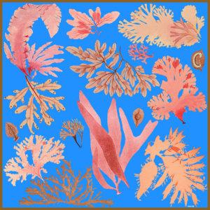 blue floating algae printed silk scarf design