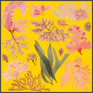 yellow floating algae printed silk scarf design