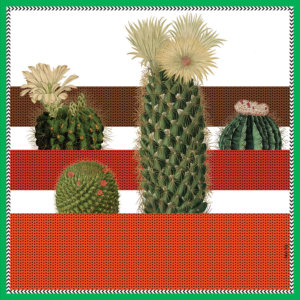 cactus printed small red and white color silk scarf design