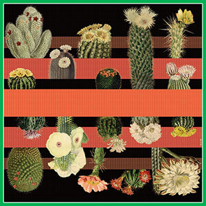 cactus printed big red and black silk scarf design
