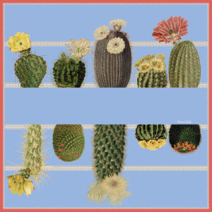 cactus and stripe printed light blue silk scarf design