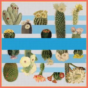 cactus printed big blue and white silk scarf design