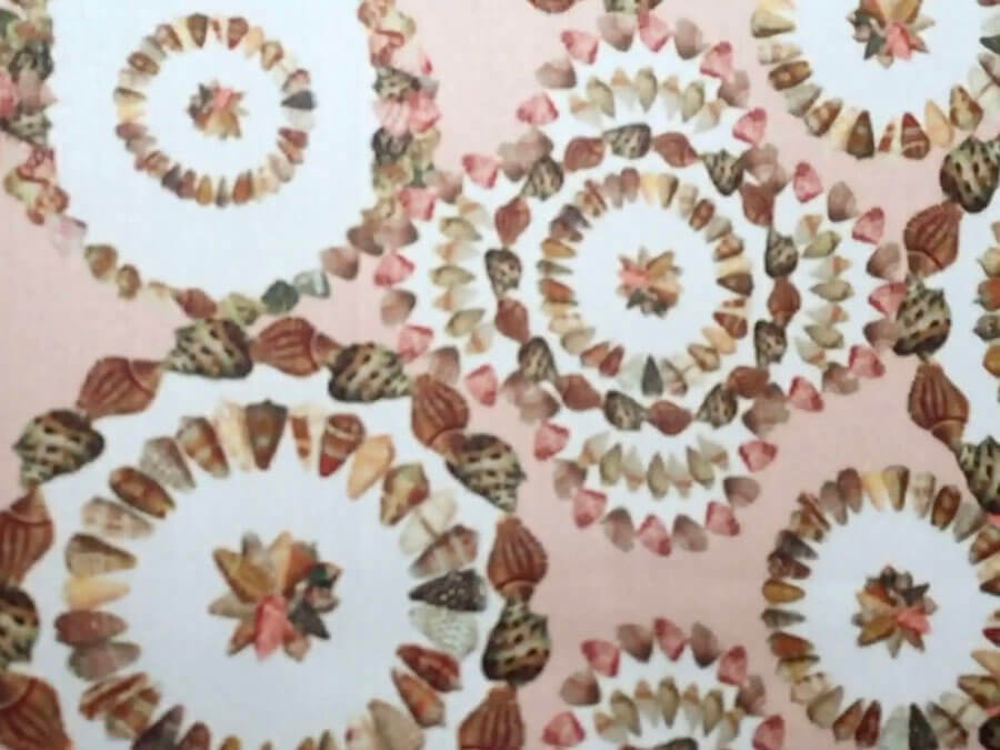 detail of shells printed on silk scarf